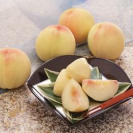 JA全農おかやま 岡山白桃 1.3kg[5~6玉]
