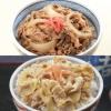 吉野家の牛丼6食・豚丼4食セット