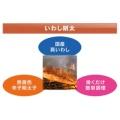 いわし明太[国産いわし使用] 10尾セット